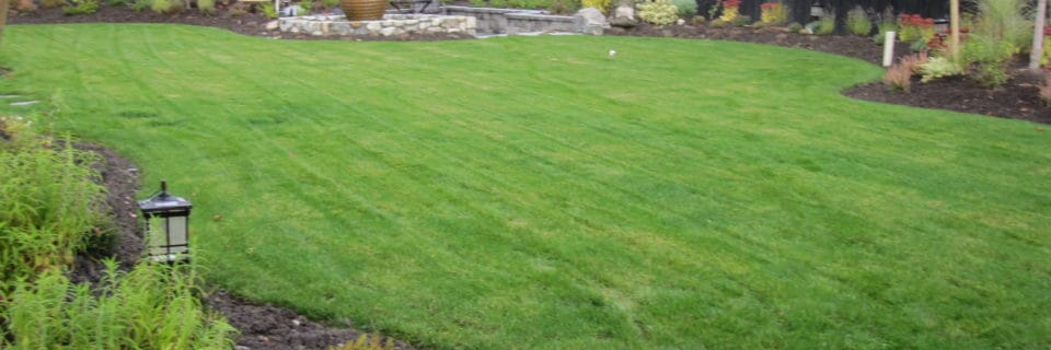 We provide landscaping services since 1998